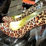 Lotsa leopard
